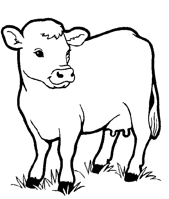 printable coloring pages for toddlers - farm animals to colour