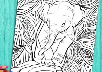 Printable Elephant Coloring Pages - Adult Coloring Book Pages