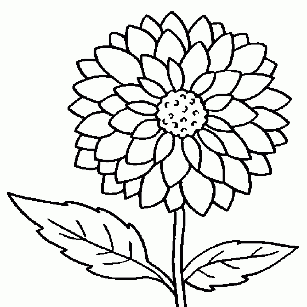 printable flower coloring pages - kids coloring pages flowers flower coloring pages tags pink flower airline logo pink flower
