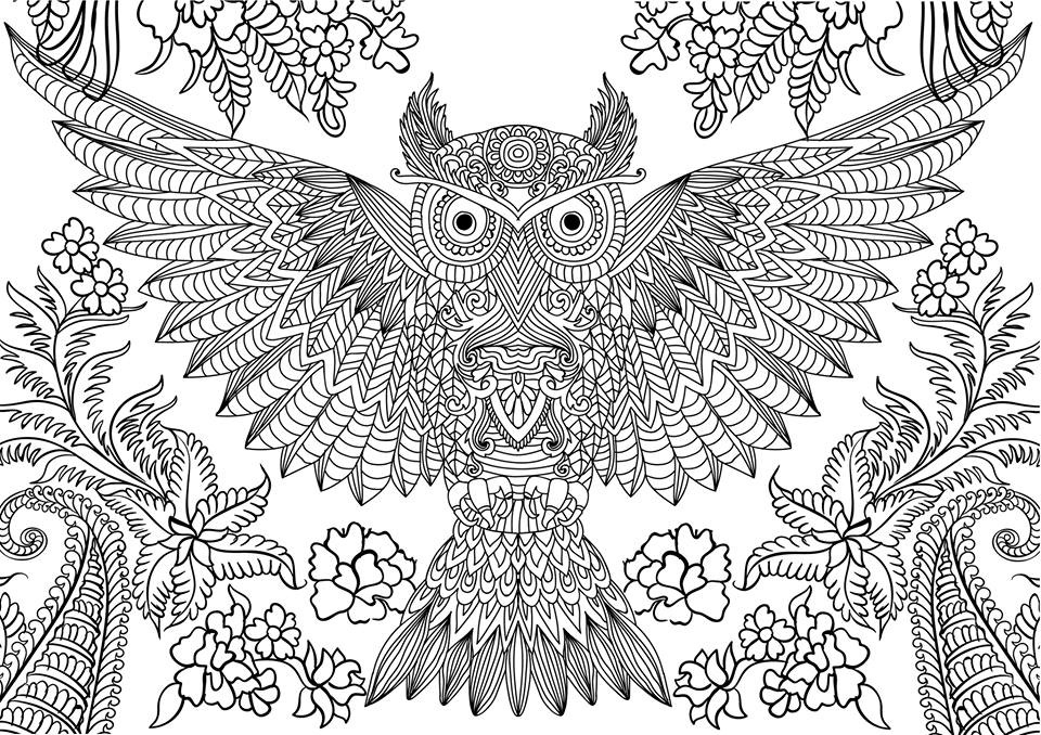 printable owl coloring pages for adults - 10 difficult owl coloring page for adults