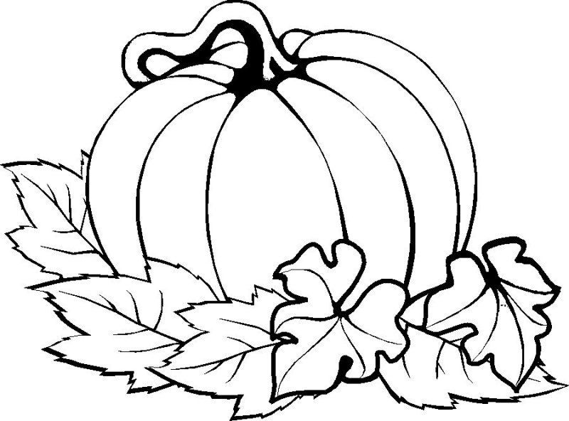 printable pumpkin coloring pages -