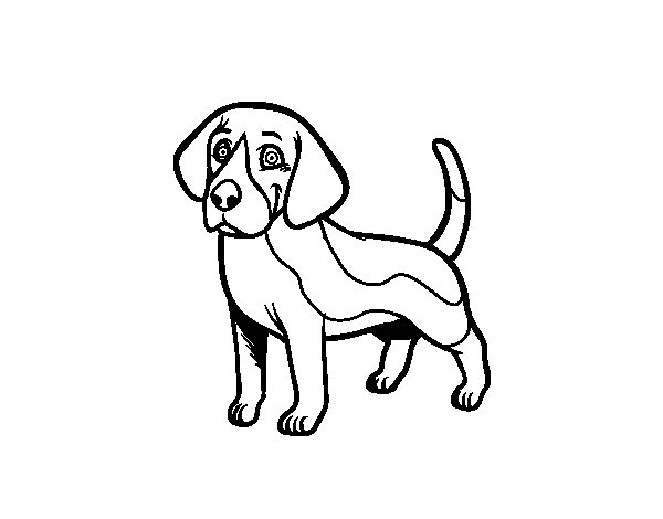 printable puppy coloring pages - beagle coloring pages