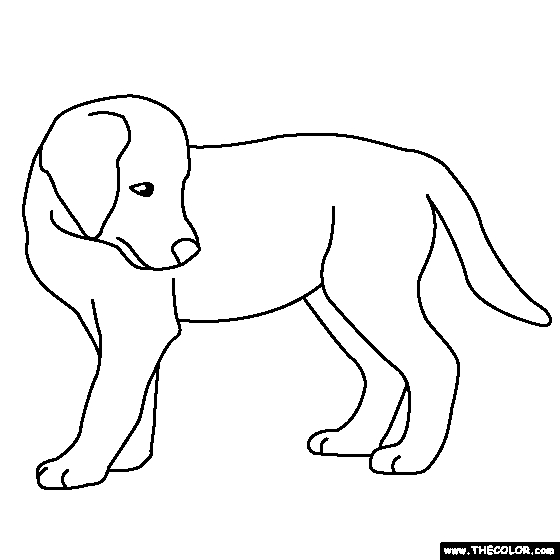 printable puppy coloring pages - black lab coloring pages
