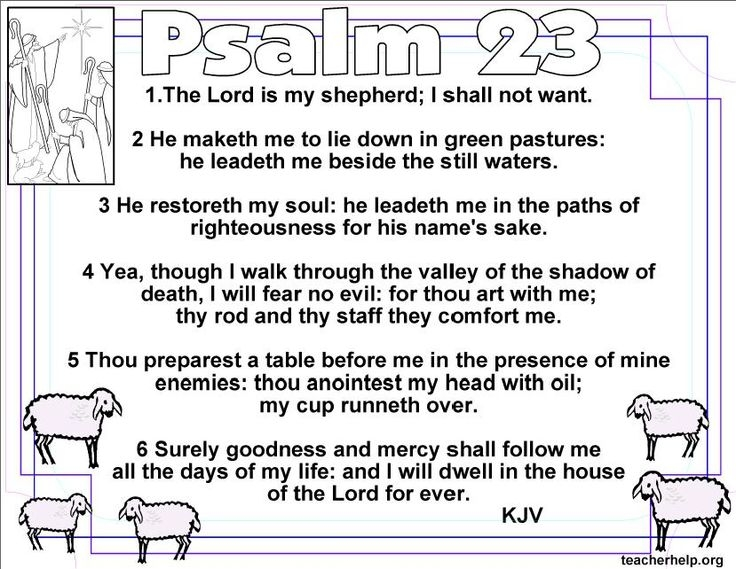 psalms 8 23 121 and 137 essay Read four psalms (8, 23, 121, 137 allow students to choose from two comparison/contrast essay prompts monitor students as they plan and draft a.