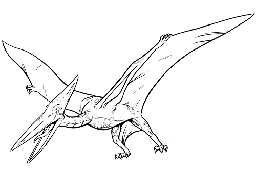 pterodactyl coloring page - q=pterodactyl cartoon