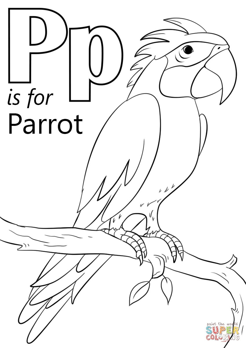 pumpkin coloring pages for preschool - letter p is for parrot