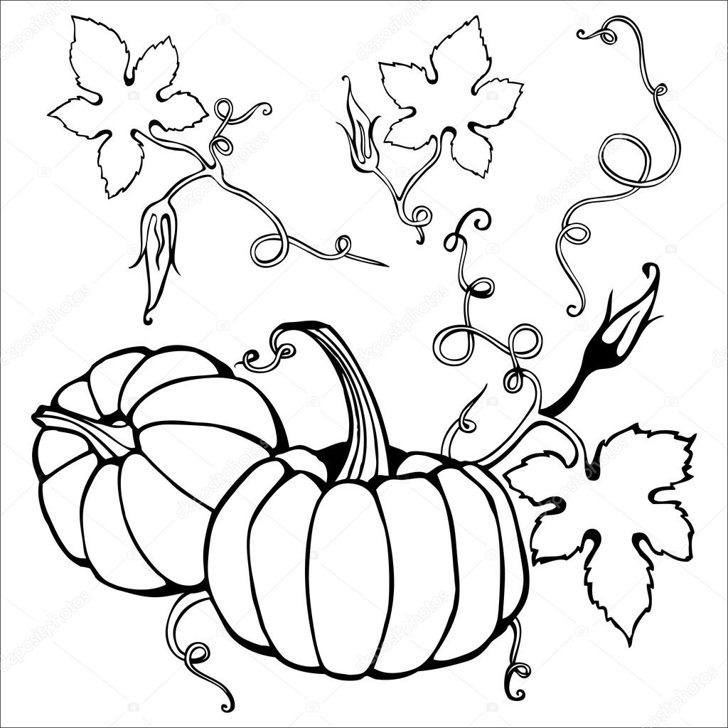 pumpkin patch coloring pages - creeper plants drawing