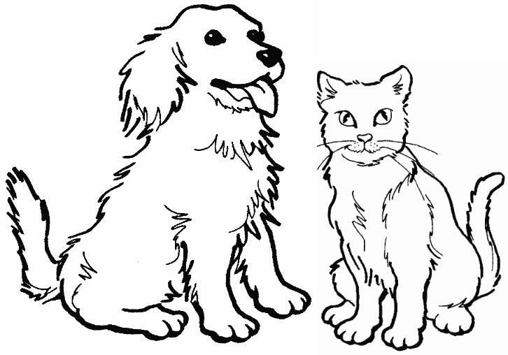 puppy and kitten coloring pages - kittens and puppies coloring pages