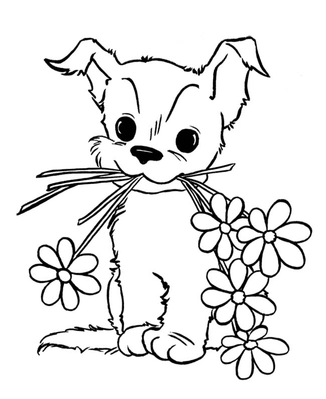 puppy and kitten coloring pages - puppies and kittens coloring pages