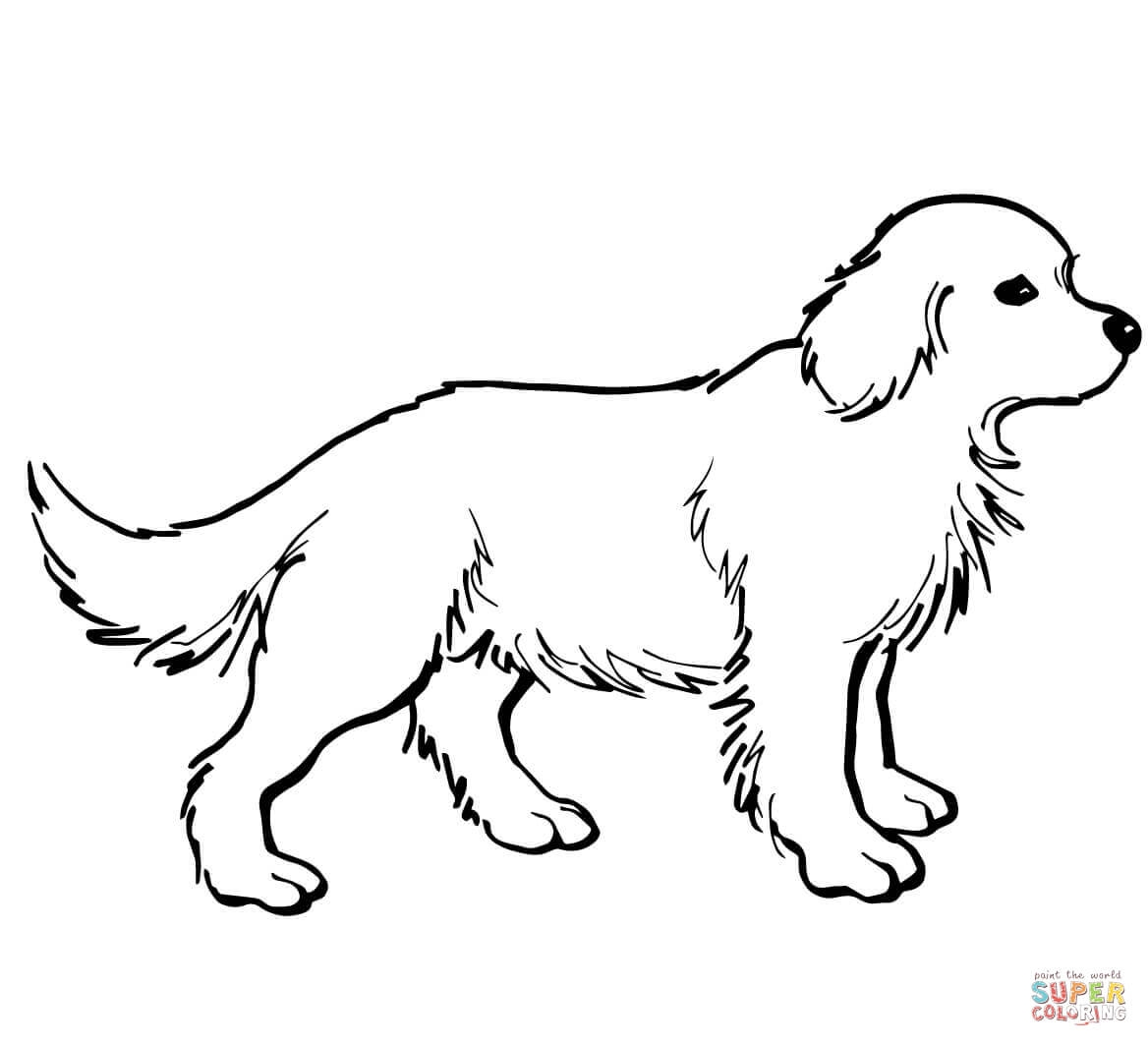 puppy coloring pages puppy outline coloring page