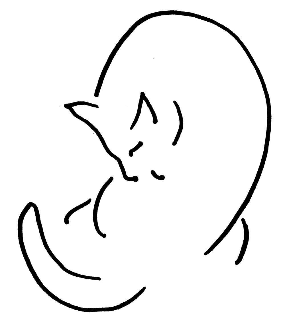 pusheen coloring pages - the artists life the inspiration of a certain black kitty 2
