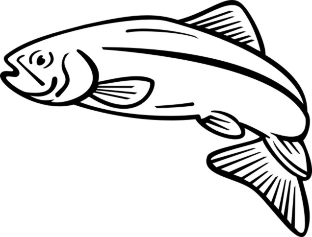 rainbow fish coloring page - salmon clipart