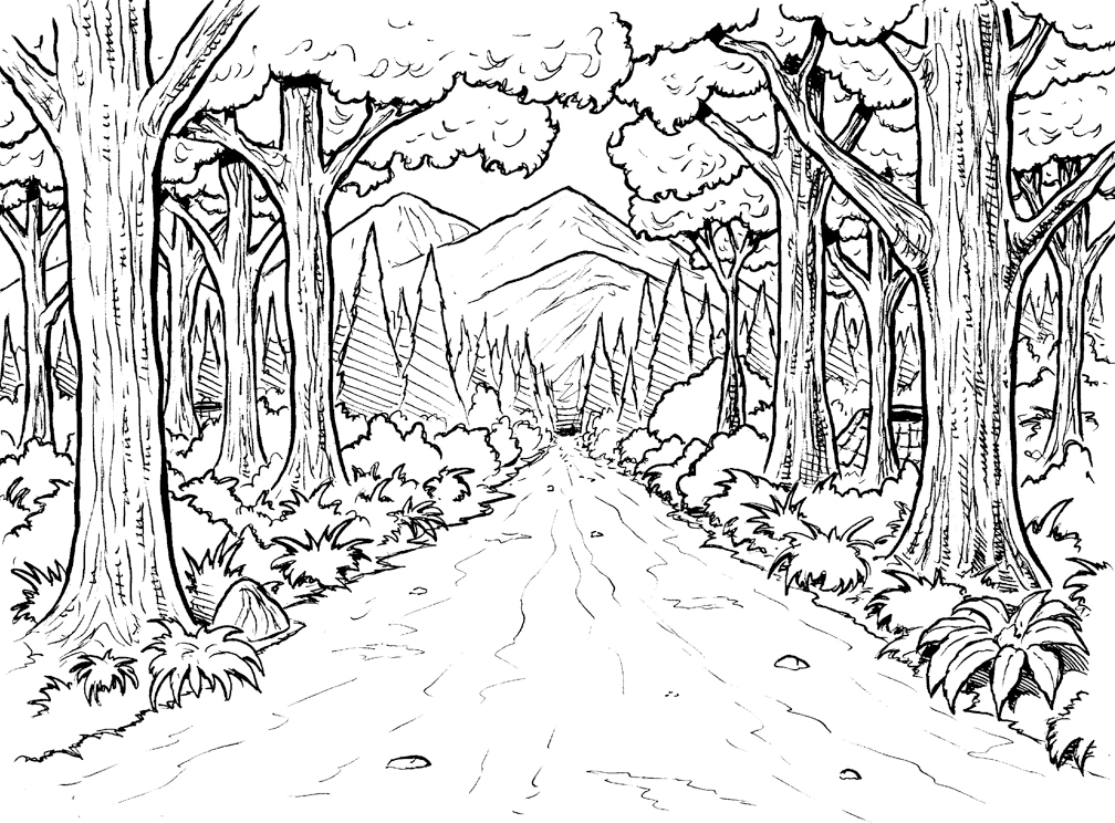 rainforest coloring pages - free rainforest coloring pages