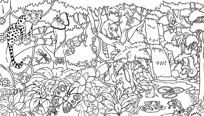 rainforest coloring pages - rainforest coloring pages endangered species coloring pages for free 1 3