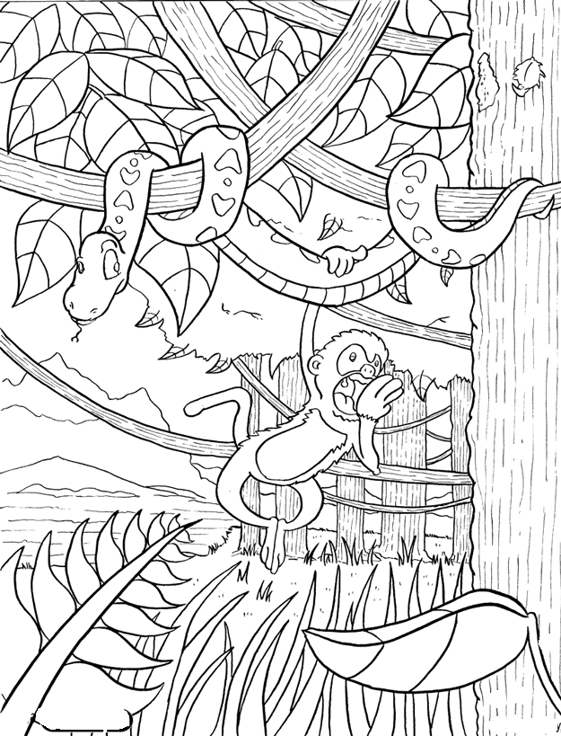 Rainforest Coloring Pages - Rainforest Coloring Pages