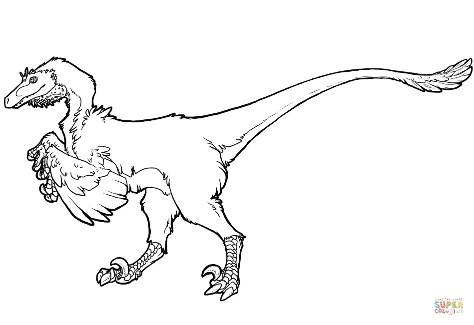 raptor coloring pages - raptor dinosaur