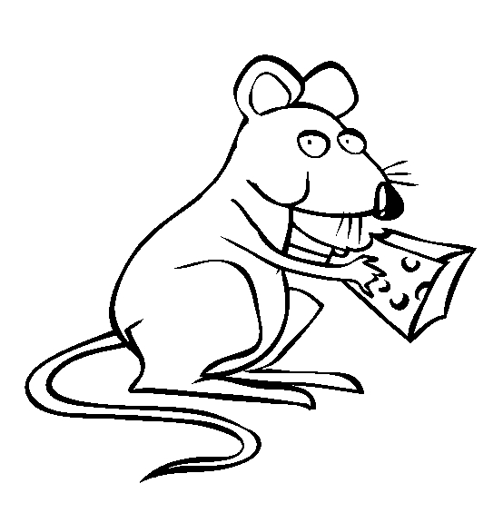 Rat Coloring Pages - Rat Coloring Page Animals town Animal Color Sheets Rat
