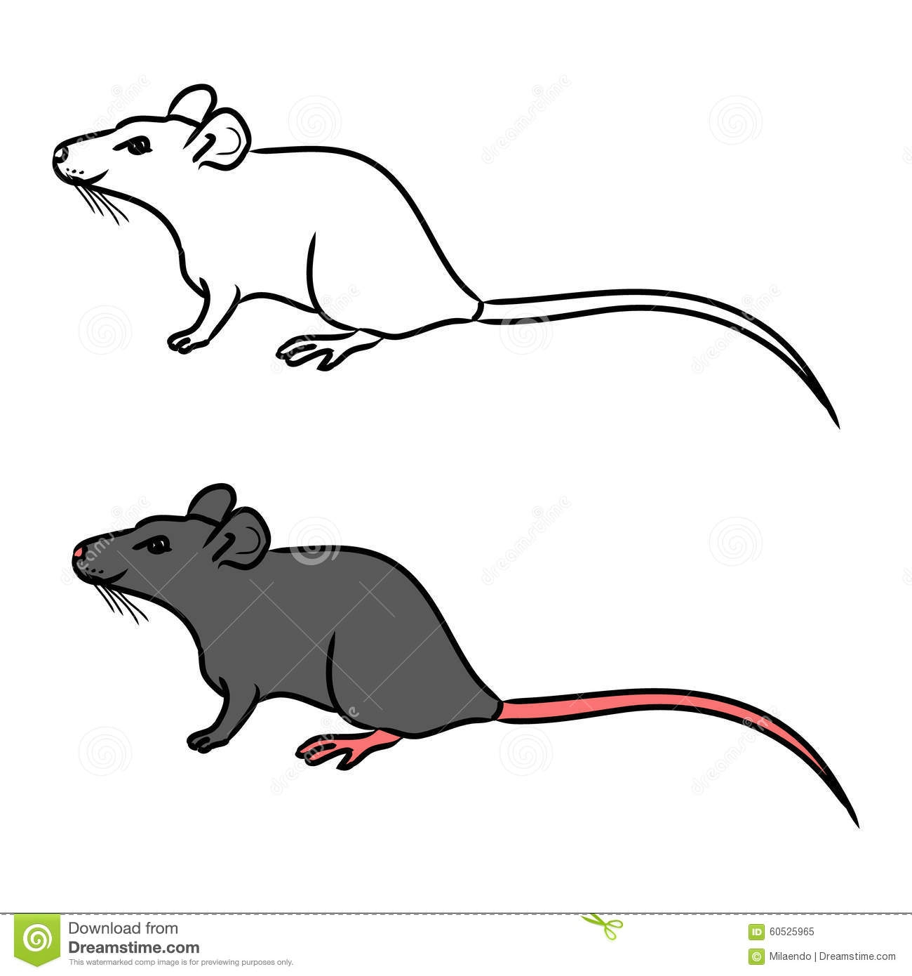 rat coloring pages - rat drawing outline