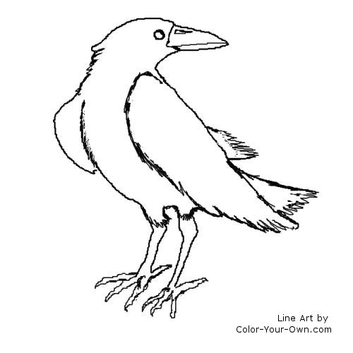 raven coloring pages - coloring pictures of the ravens symbol sketch templates