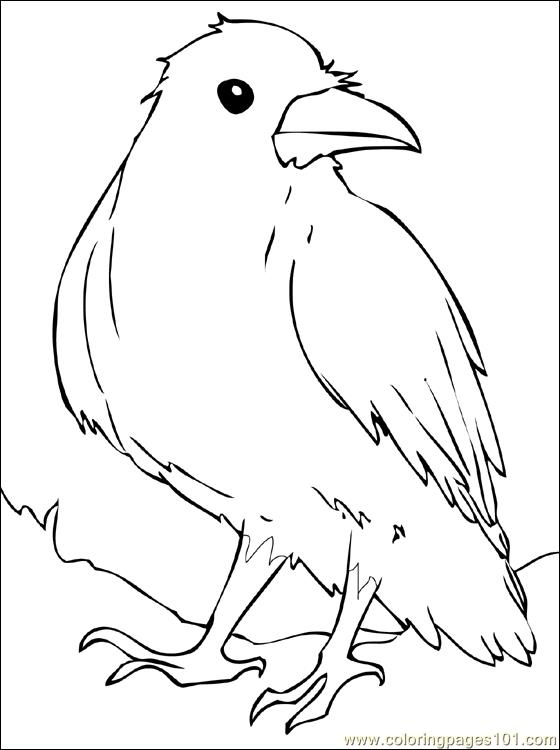 raven coloring pages - Raven