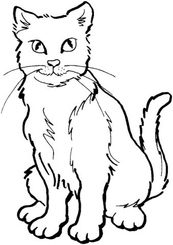 realistic coloring pages - madry kot