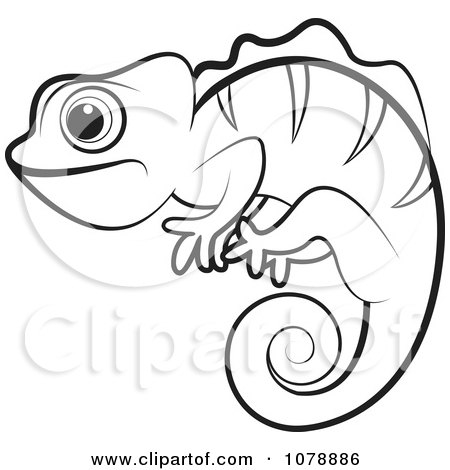 reptile coloring pages - outlined chameleon lizard