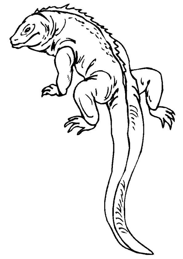 reptile coloring pages - animaatjes hagedis