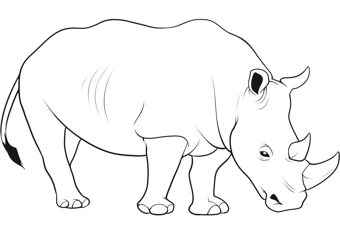 rhino coloring page - woolly rhino coloring pages sketch templates