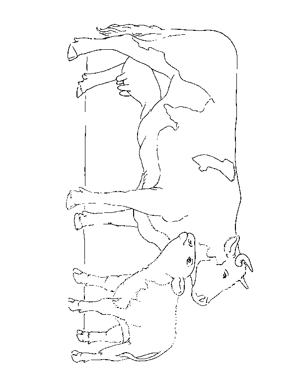 rodeo coloring pages - kuh