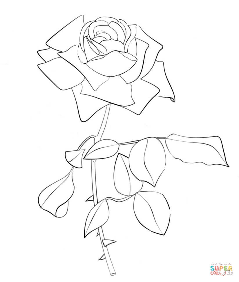 Rose Coloring Pages Printable - 100 Rose Color Pages
