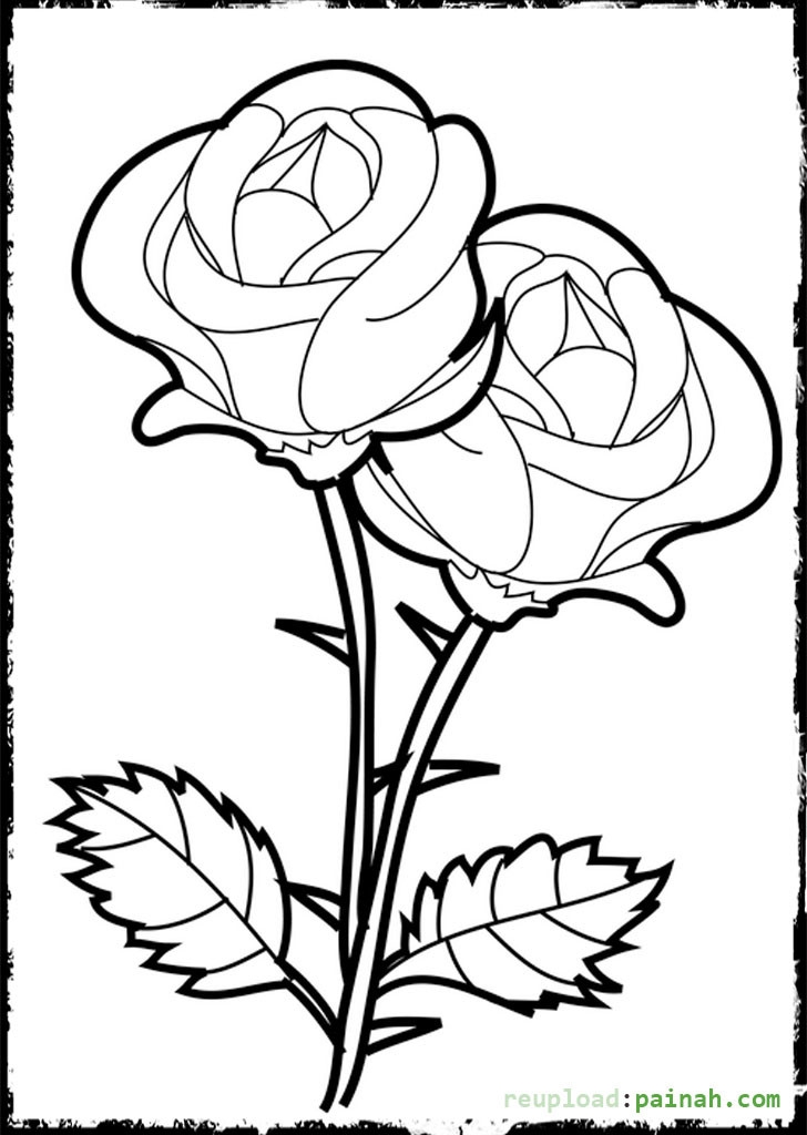 rose coloring pages printable - beautiful rose coloring pages printable