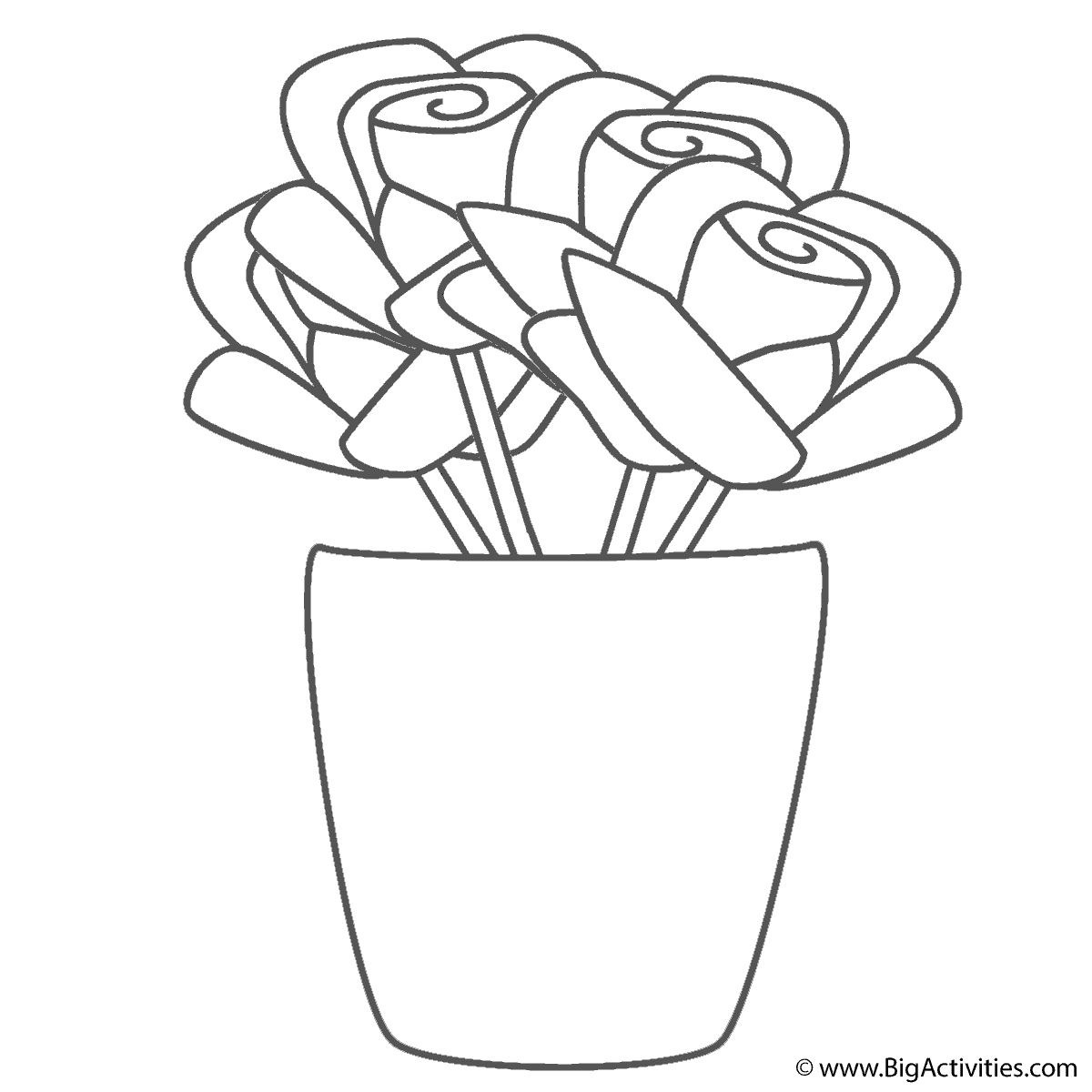 rose flower coloring pages - roses