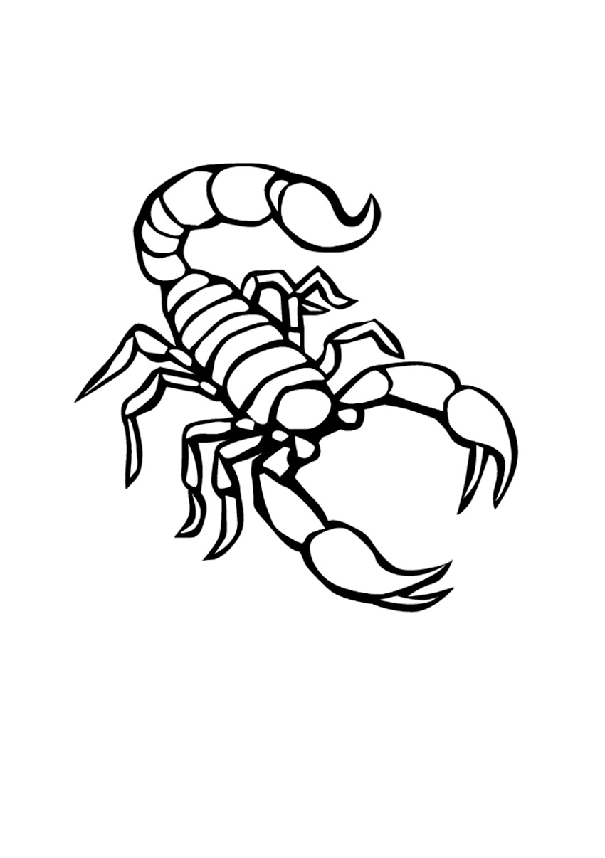 Scorpion Coloring Pages - Free Printable Scorpion Coloring Pages for Kids