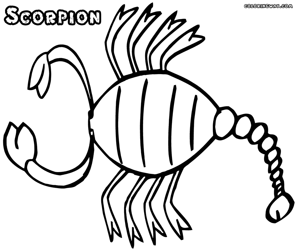 scorpion coloring pages - scorpion sketch templates