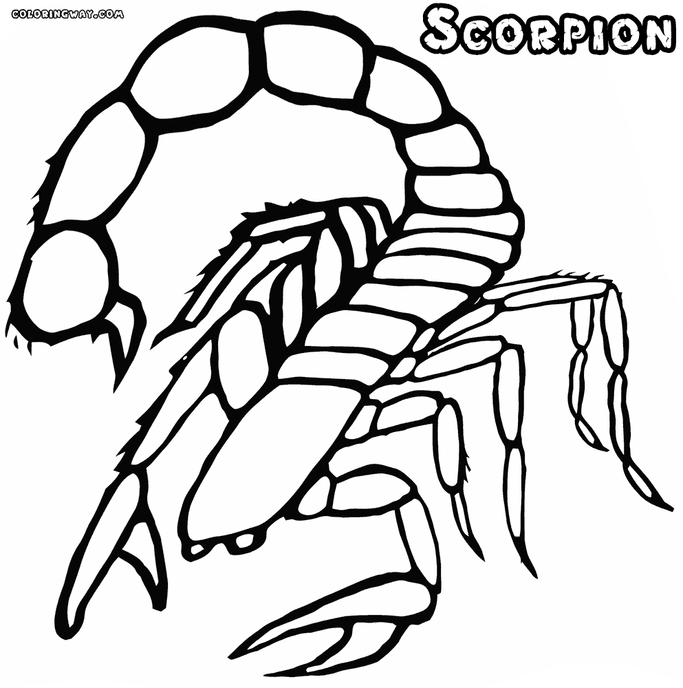 scorpion coloring pages - scorpion coloring pages