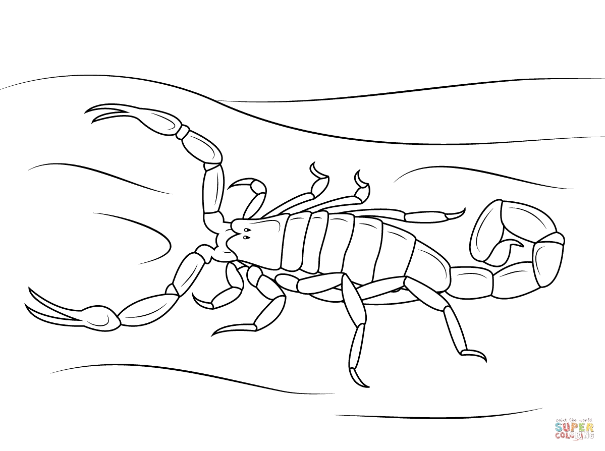 scorpion coloring pages - Scorpion