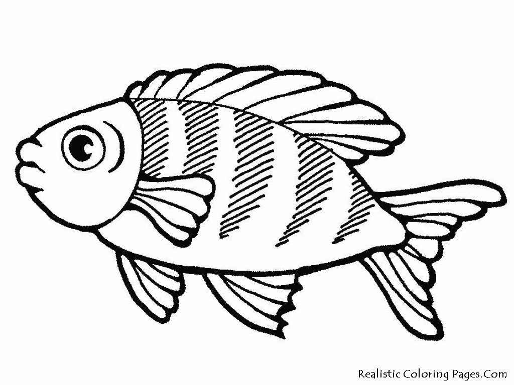 sea animals coloring pages - 38 collections of free coloring pages of fish