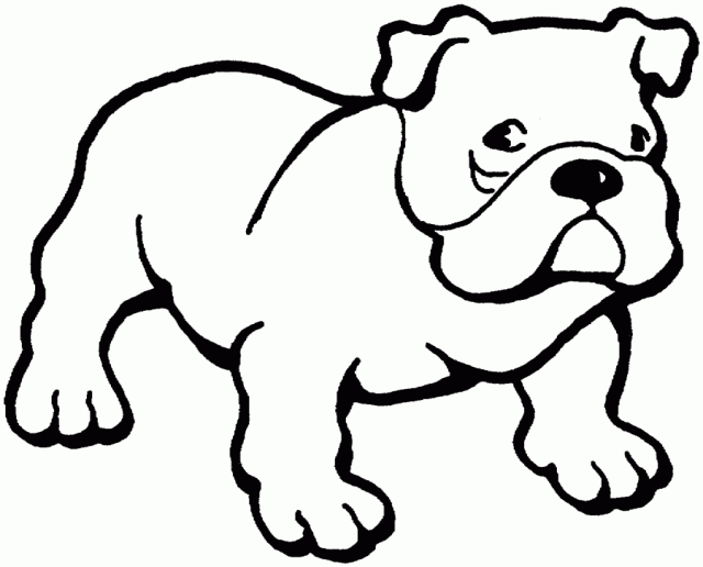 sea animals coloring pages - bulldog