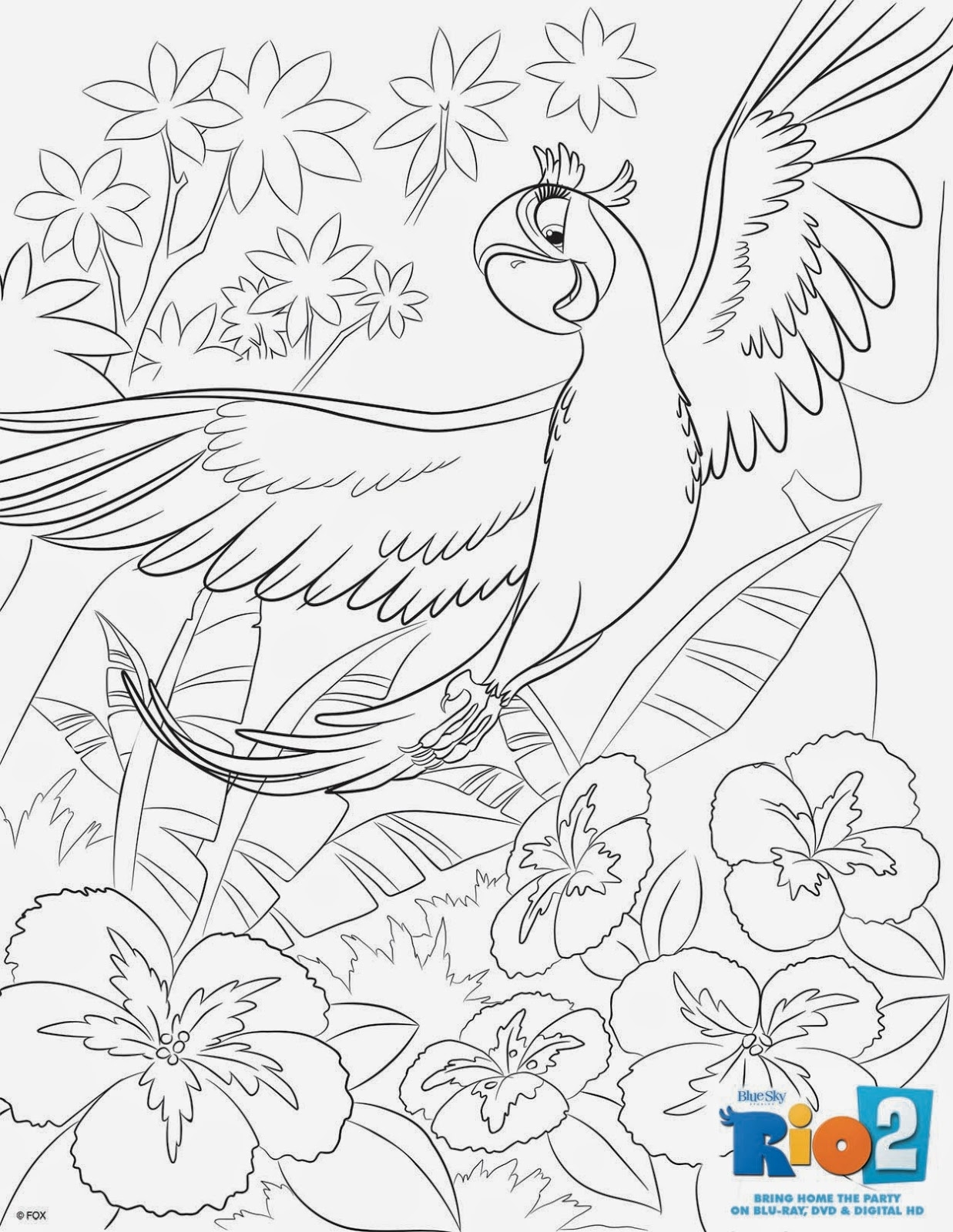 sea otter coloring page - scarlet macaw coloring page