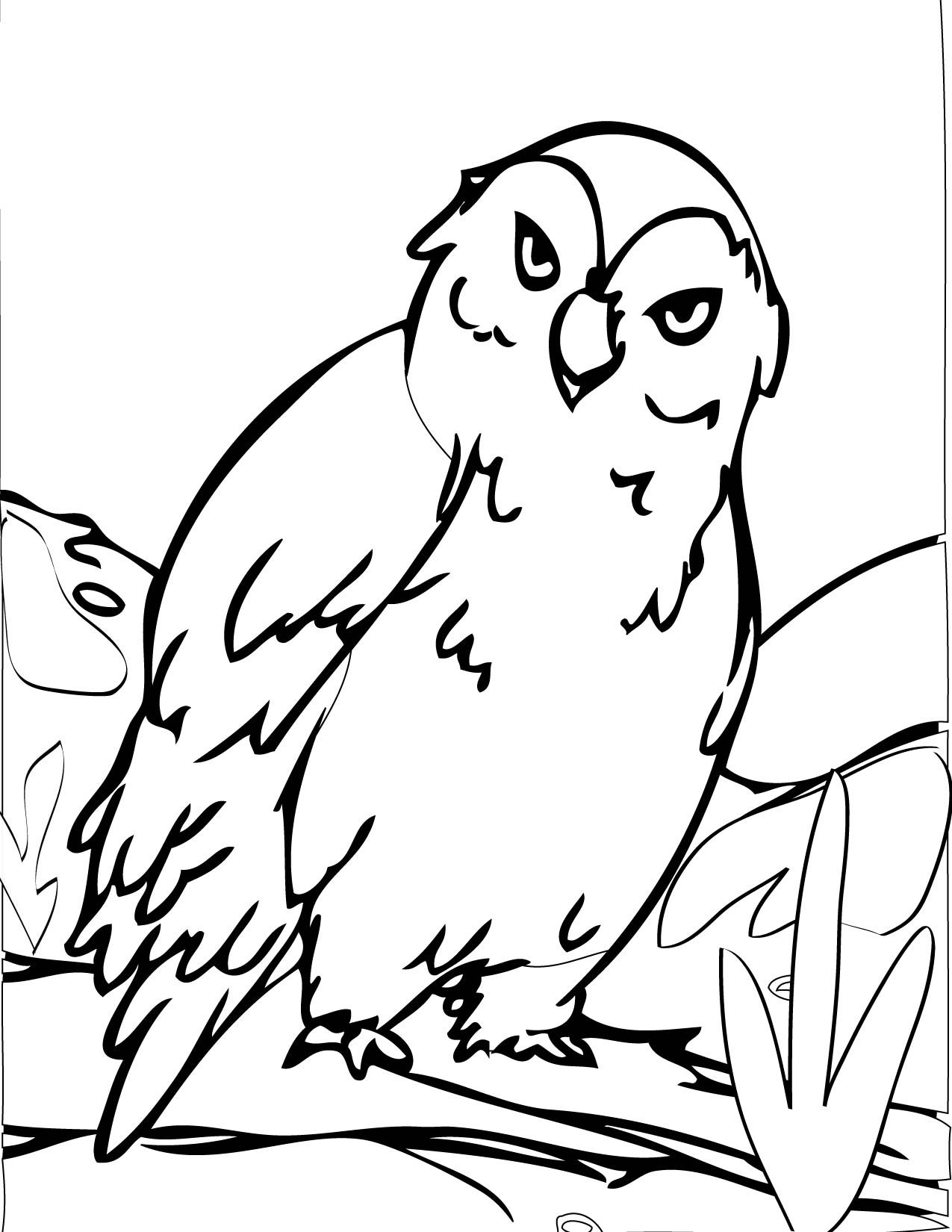 seal coloring pages - snowy owl