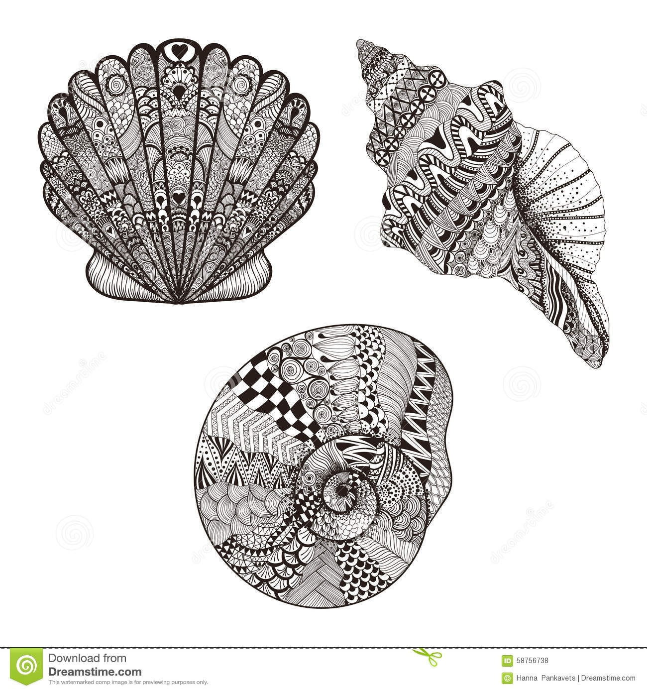 seashell coloring page - stock illustration zentangle stylized set seashells hand drawn vector illustration isolated white backgrounds sketch tattoo makhenda image