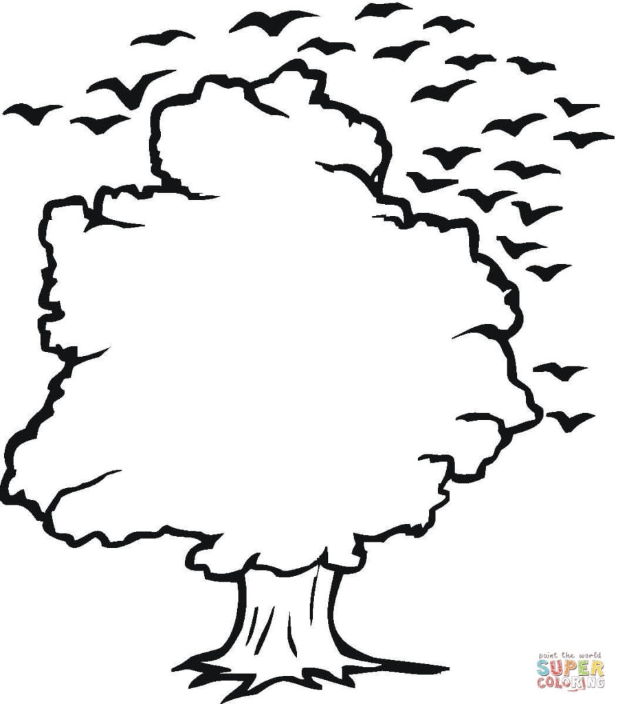 september coloring pages - tree and birds outline coloring online