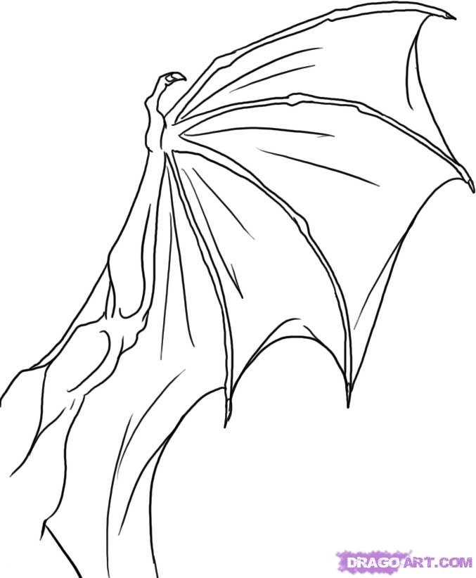 shapes coloring pages - how to draw a dragon wing