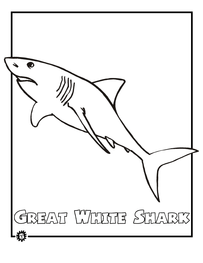 graphic relating to Printable Shark Pictures named 21 Shark Coloring Internet pages Printable Collections Absolutely free