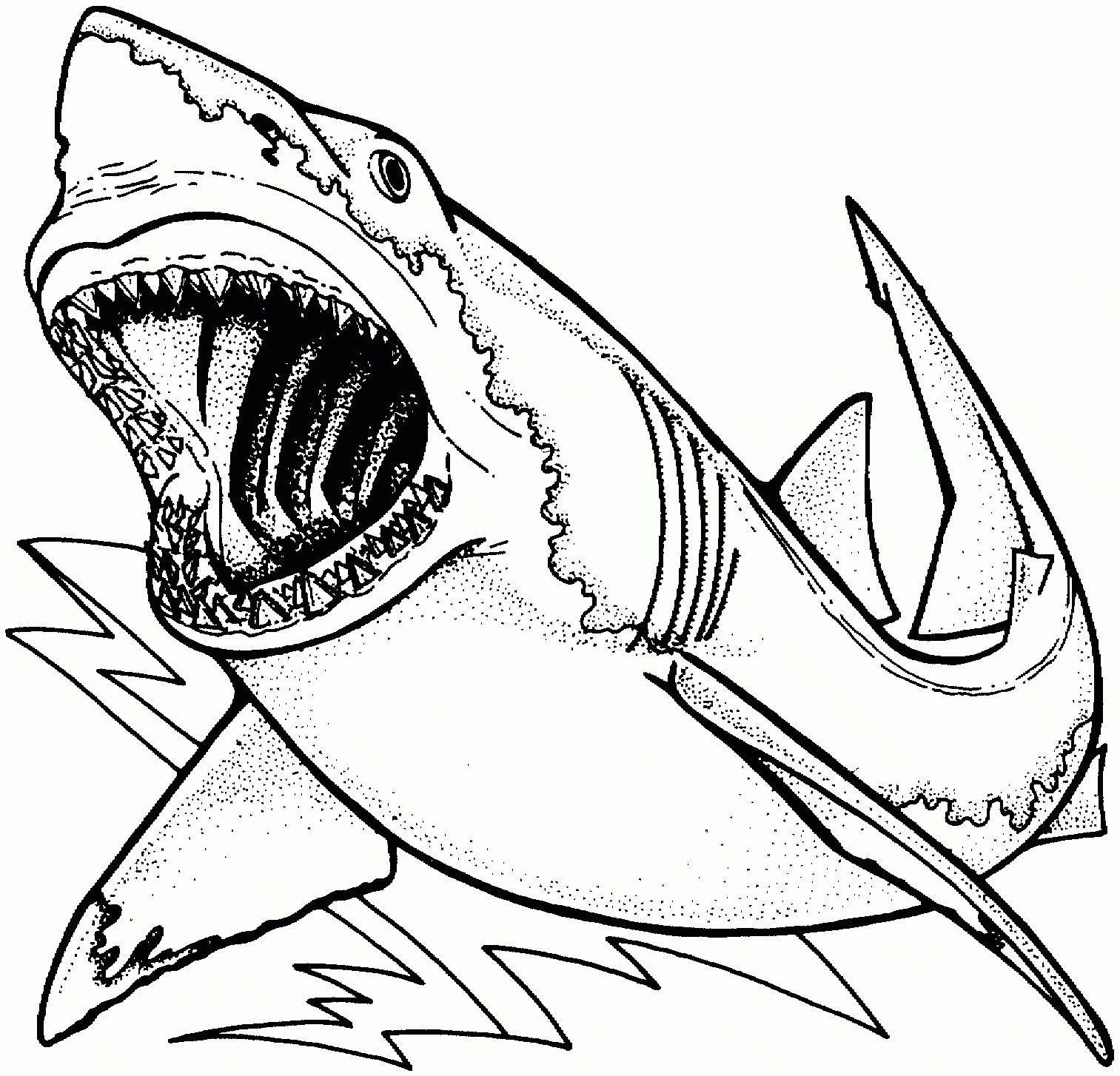shark coloring pages - shark coloring page