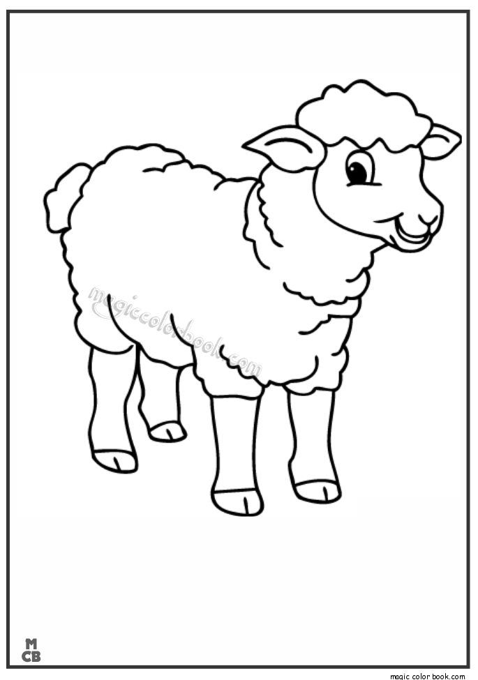 25 Sheep Coloring Page Collections | FREE COLORING PAGES - Part 2