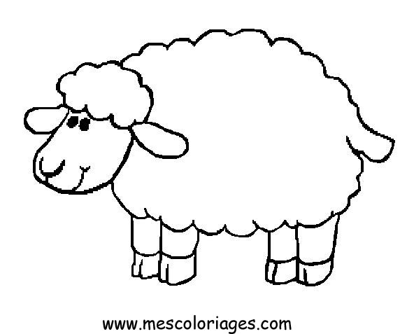 sheep coloring page - coloringpages sheep 1