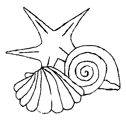 shell coloring pages - coloringpages shells
