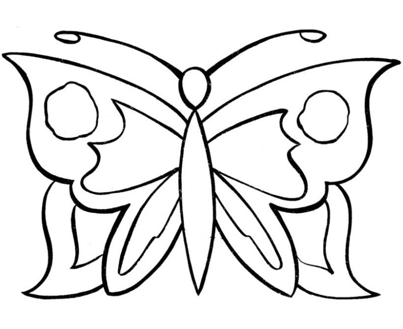 simple coloring pages - coloring pages of a butterfly