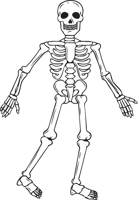 skeleton coloring pages - skeleton coloring pages